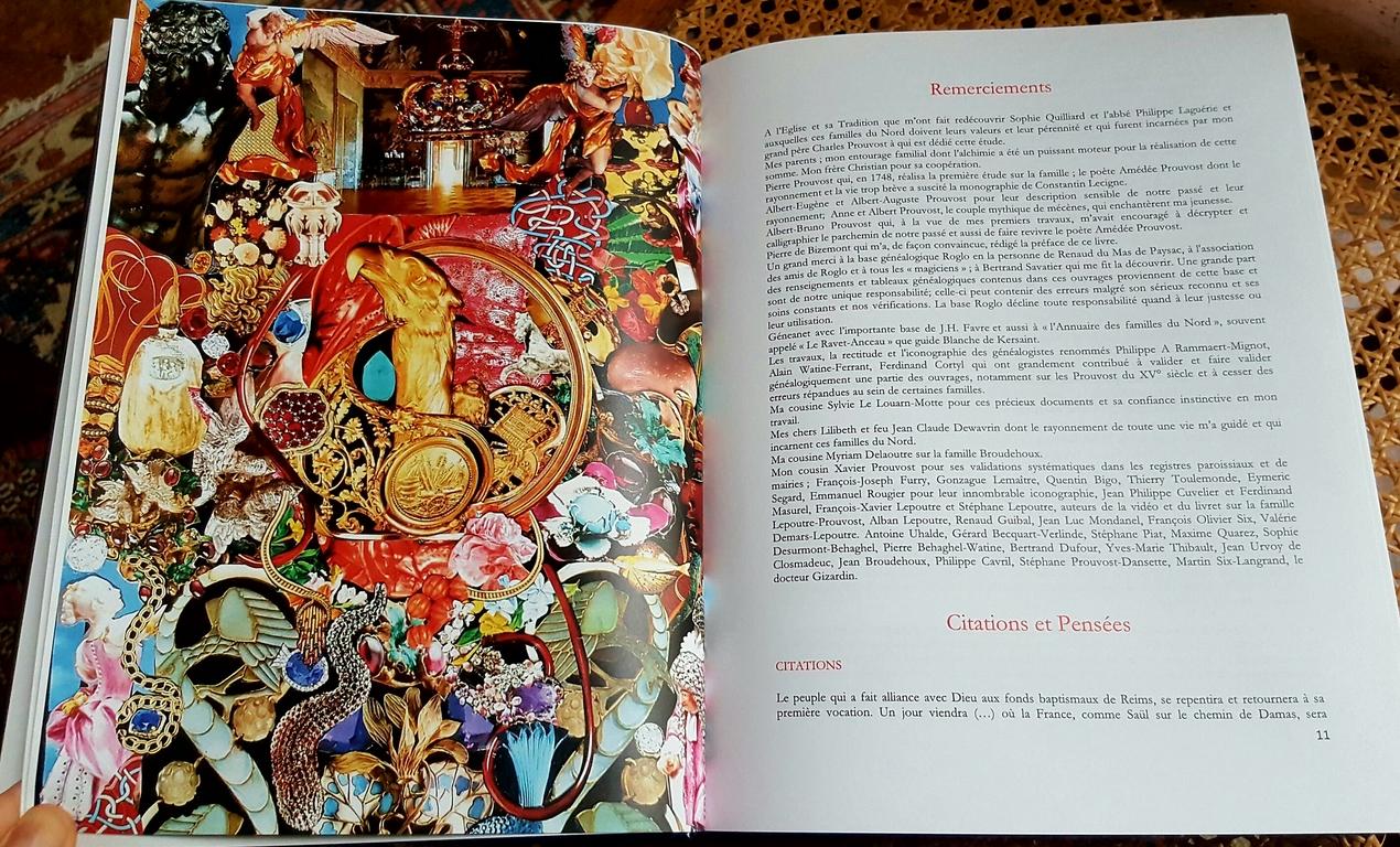 Couverture-livre-lulu-Prouvost