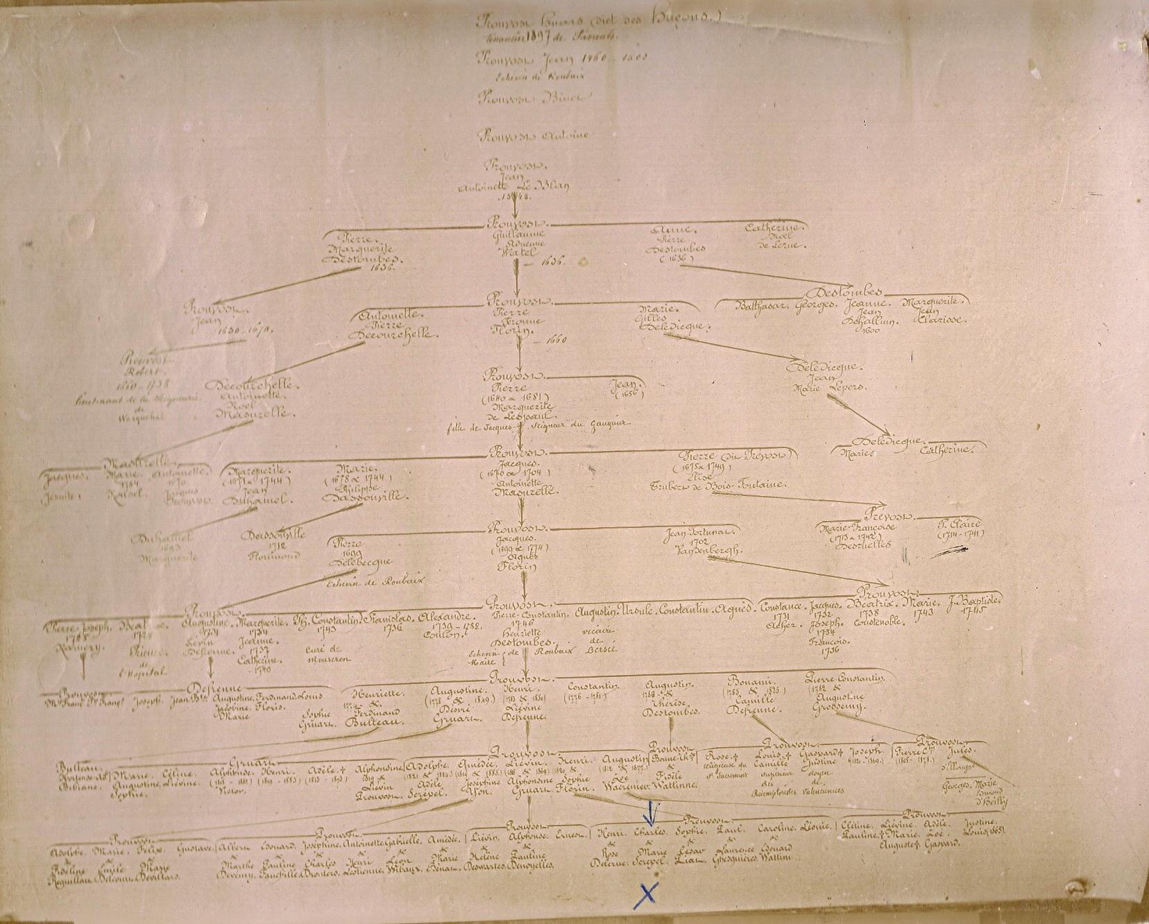 tableau-genealogique-prouvost